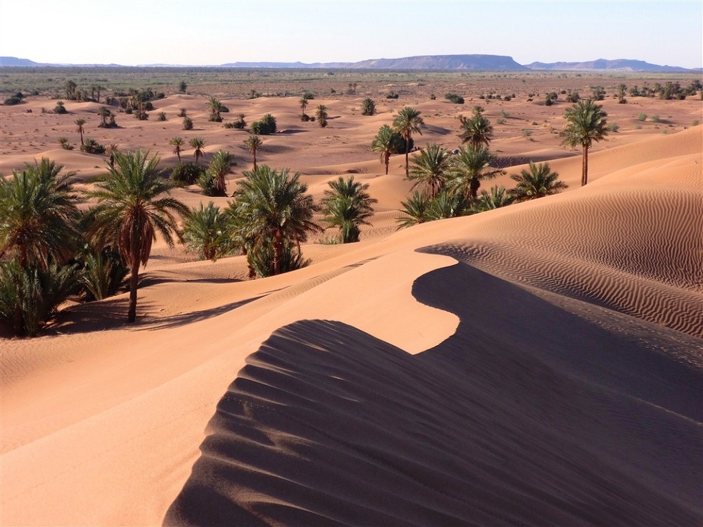 Dunes de la vallée du Drâa - ©Florent Leclerc