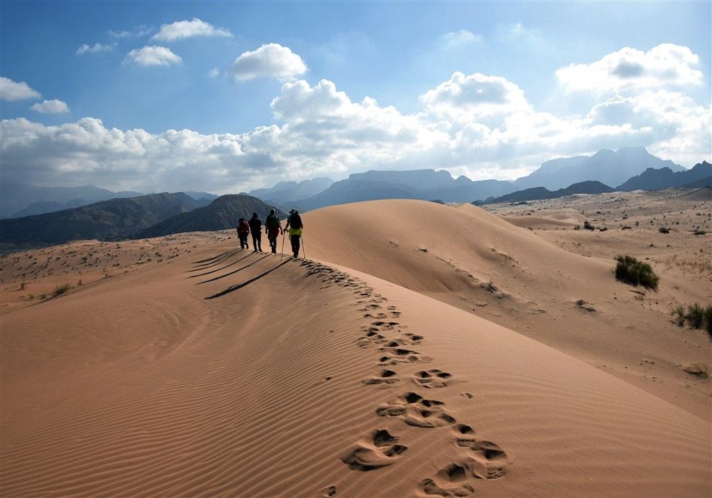 Dans le wadi Araba, Jordanie