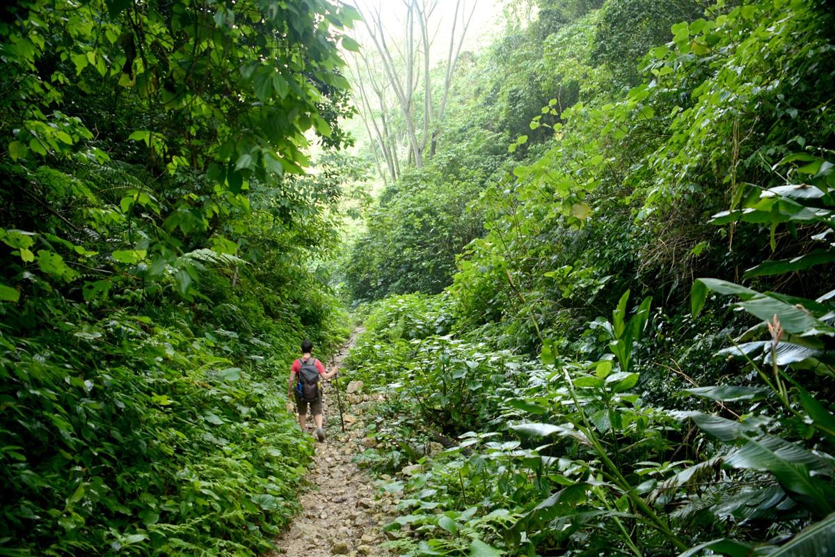 Randonnée de Cachote à Polo - Sierra de Bahoruco, République Dominicaine