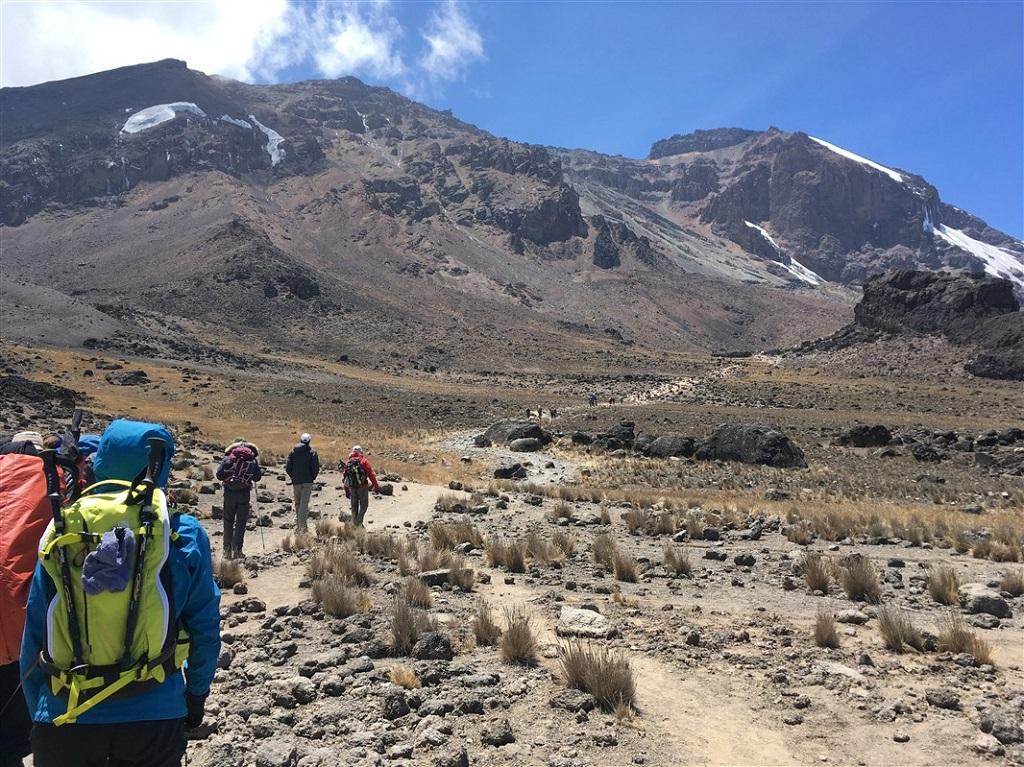 Kilimandjaro, voie Machame