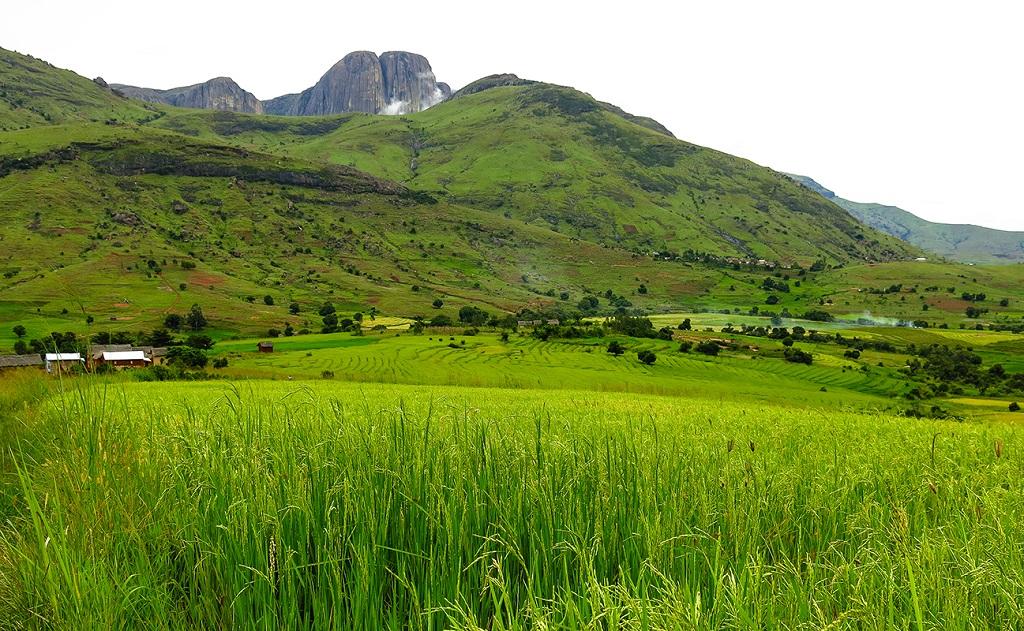 Vallée de Tsaranoa - Parc national d'Andringitra - Madagascar