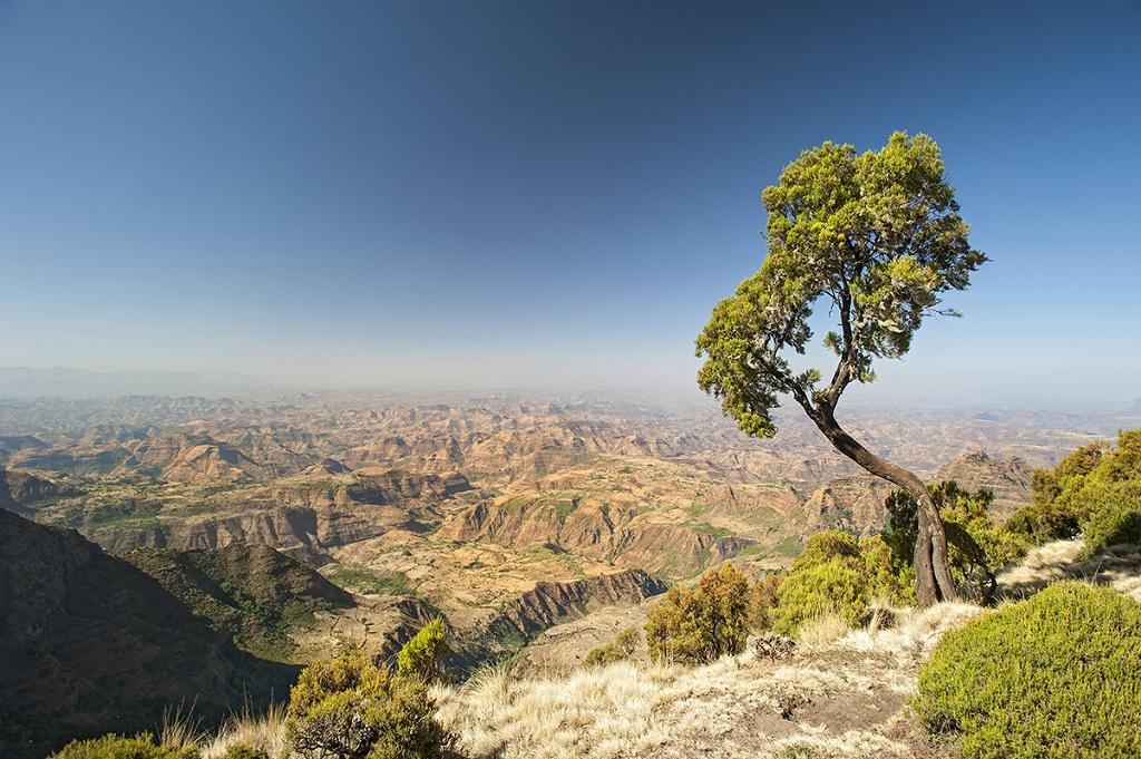 Montagnes du Simien