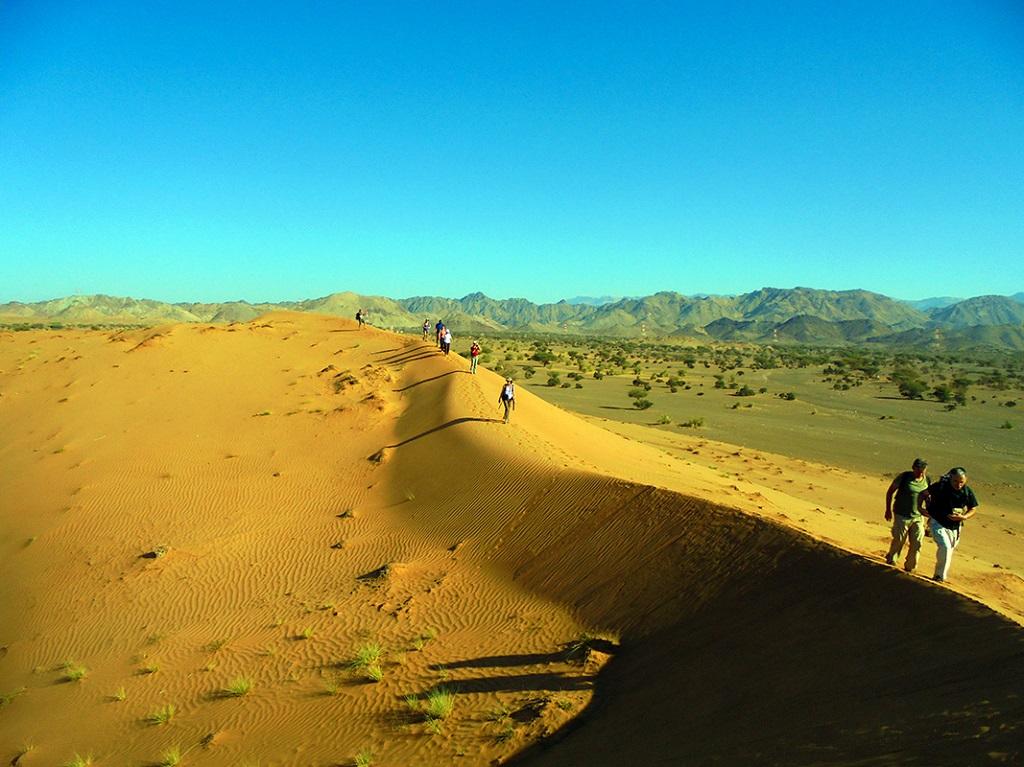 Désert Taamer, Oman