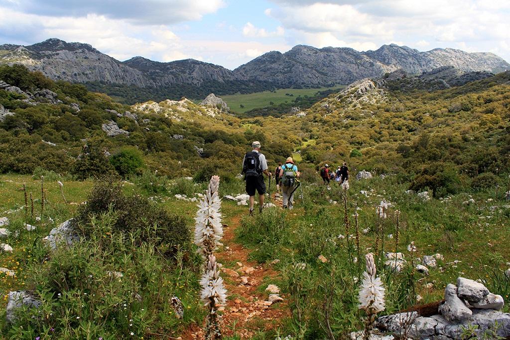 Sierra - Grazalema - Espagne