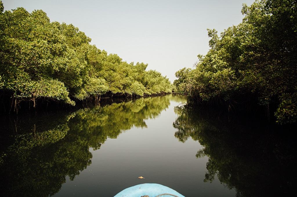 Delta du Siné Saloum