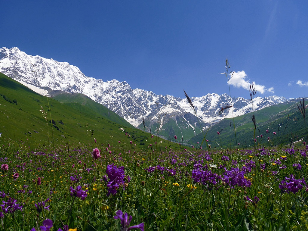Mont Shkara - Géorgie