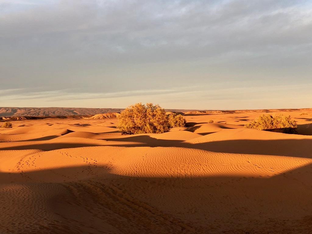Le coucher de soleil aux couleurs rougeoyantes illumine le paysage dunaire du sud marocain