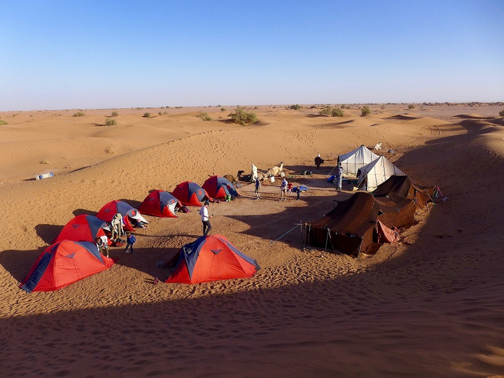 Le campement dans le désert