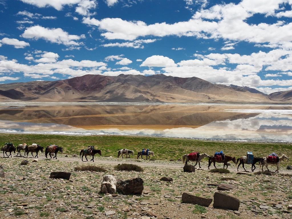 Traversée de la plaine du Tso Kar