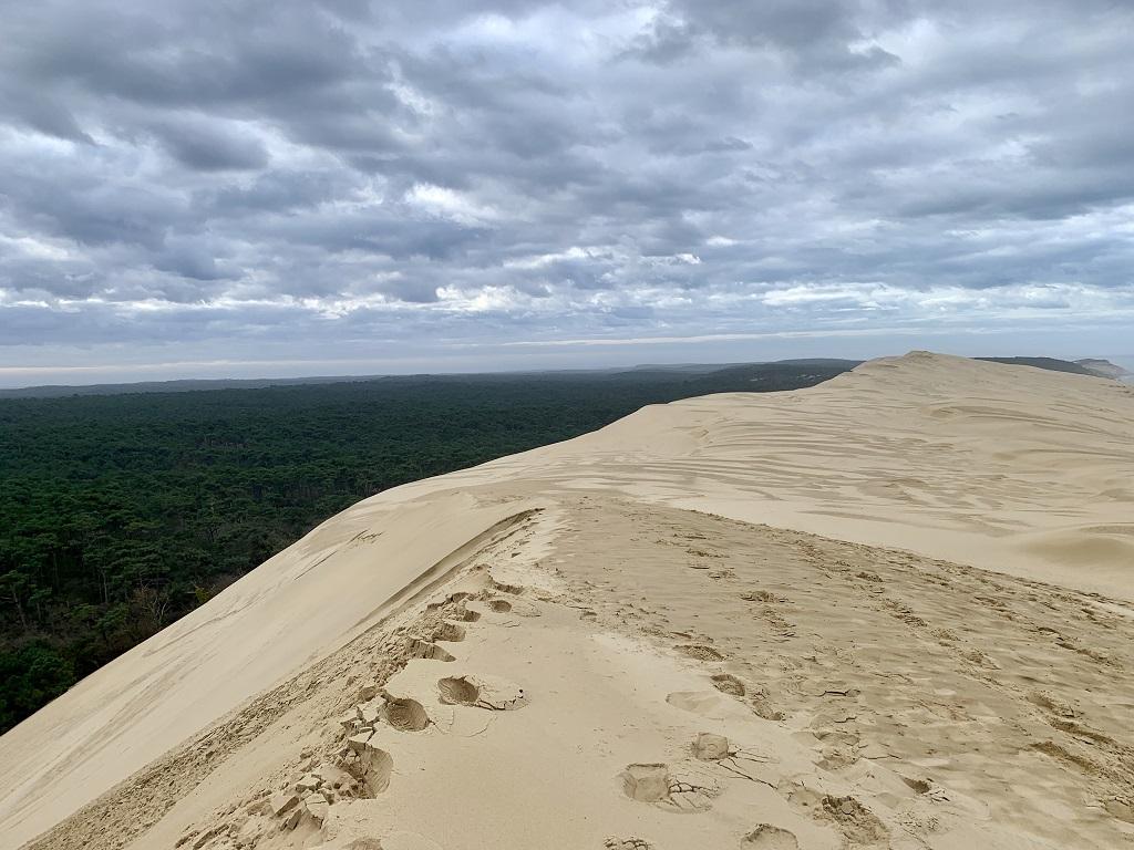 A l'assaut des dunes d'Arcachon