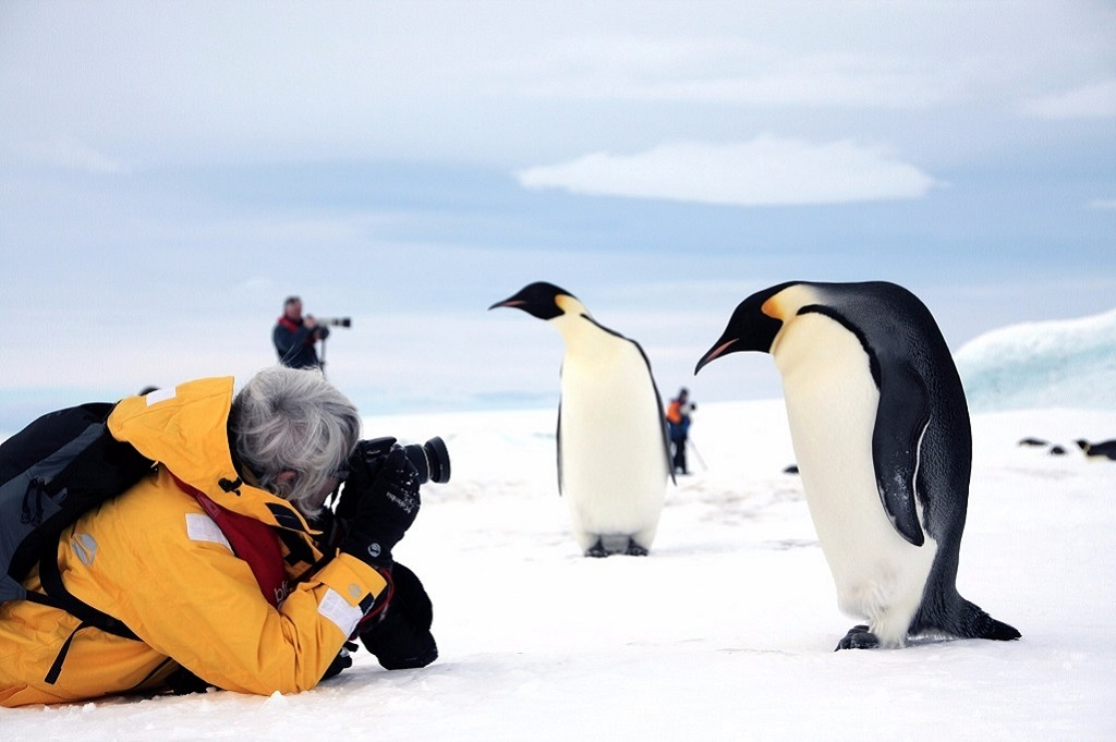Rencontres inoubliables, pleines de curiosité - ©Quark Expeditions