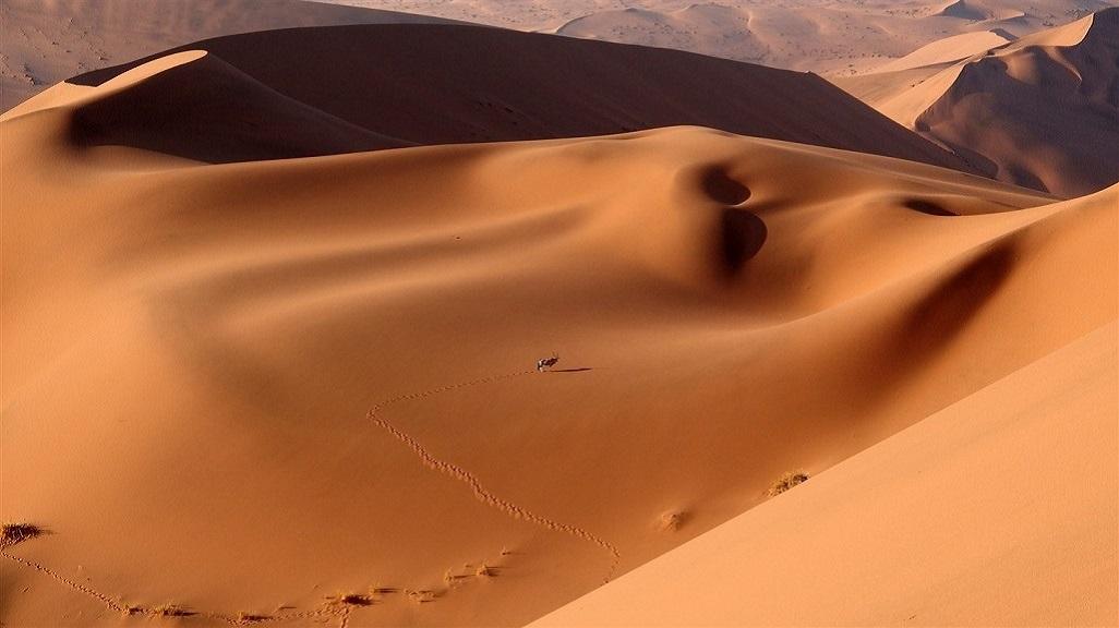 Sossusvlei et Dead Vlei, désert du Namib