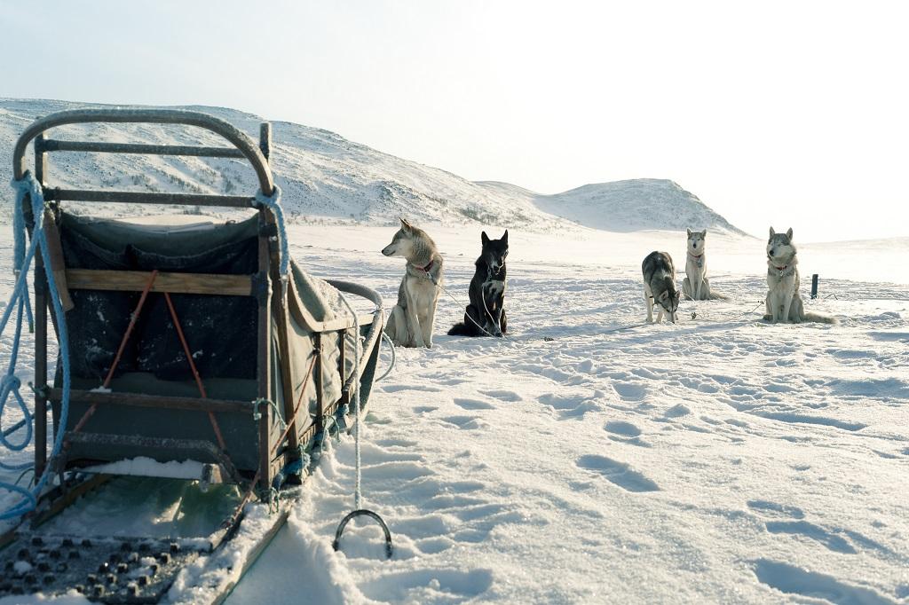 Plateau de Kilpisjarvi, en Laponie - ©Anne Gaelle Nicolas