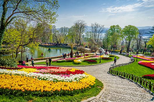© Istanbul en fleurs - Ozdereisa/stock.adobe.com